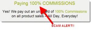 pure-leverage-100-percent-commissions