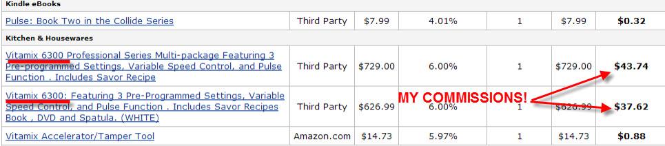 My Amazon Earnings Report