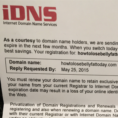 The iDNS domain scheme